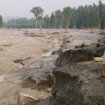 Suzuki-Canada-at-risk-for-more-Mount-Polley-type-disasters