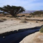 Crude oil streams through desert in south Israel, near village of Beer Ora, north of Eilat