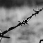 barbed_wire_on_a_moto_ride_-_bw